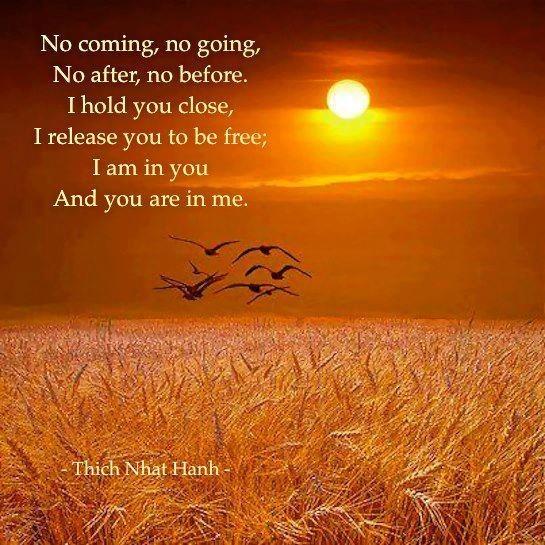 Gedicht Liefde Is Loslaten Delaclarissabetty Site
